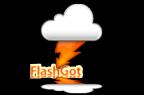 flashgot